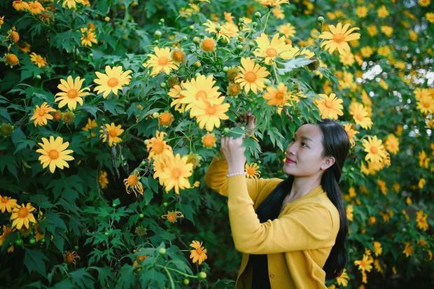 """Rực rỡ khắp newsfeed 9 cung đường săn hoa dã quỳ đẹp nhất Đà Lạt: Ơn giời, """"mùa vàng"""" của hội sống ảo đây rồi! - Ảnh 8."""
