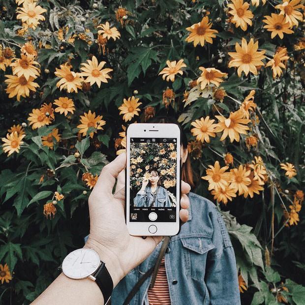 """Rực rỡ khắp newsfeed 9 cung đường săn hoa dã quỳ đẹp nhất Đà Lạt: Ơn giời, """"mùa vàng"""" của hội sống ảo đây rồi! - Ảnh 2."""
