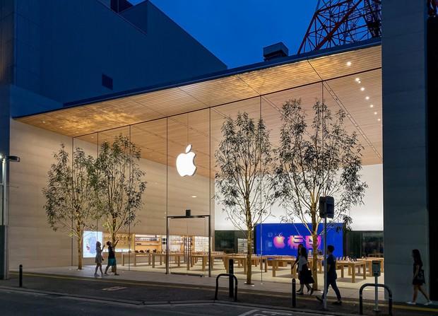 Lạ lùng với Apple Store mới toanh đậm chất Nhật Bản: Thiết kế cây nhà lá vườn chưa từng có trên thế giới - Ảnh 3.