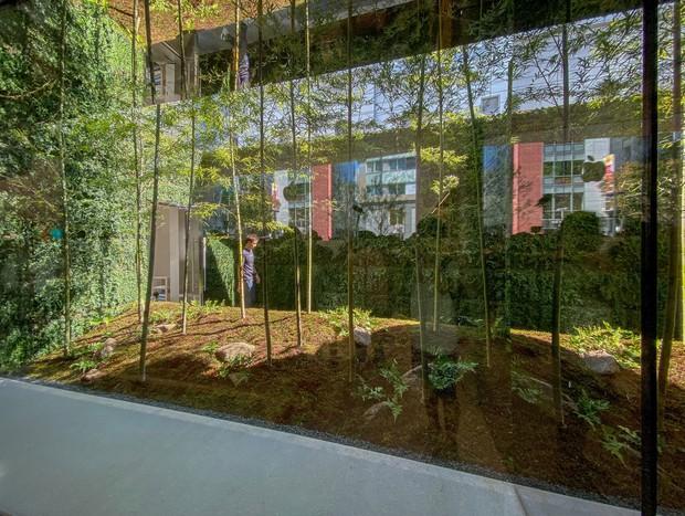 Lạ lùng với Apple Store mới toanh đậm chất Nhật Bản: Thiết kế cây nhà lá vườn chưa từng có trên thế giới - Ảnh 5.