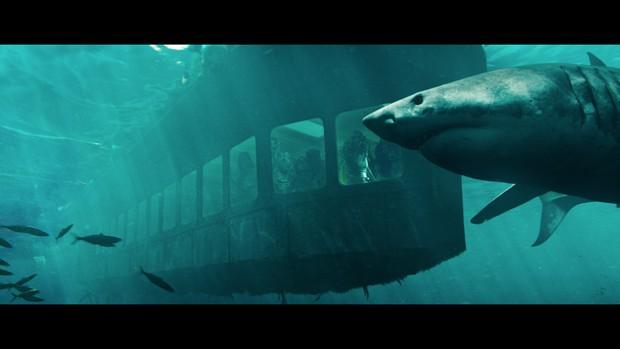 Điện ảnh tháng 9: Gã Hề Ma Quái trở lại quẩy banh phòng vé, phim Việt đủ món từ ngôn tình đến kinh dị! - Ảnh 4.