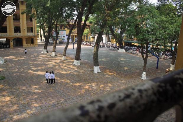 Bật mí bí mật của 3 ngôi trường nổi tiếng ở Hà Nội: Có 1 sở thú ngay trong trường, học hành bị stress quá thì rủ nhau trốn lên cửa trời - Ảnh 2.