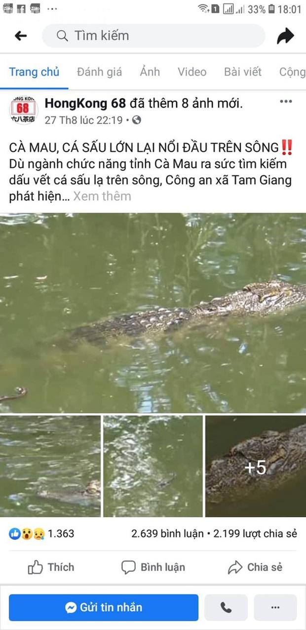 Fanpage quán trà sữa ở Cần Thơ đăng thông tin cá sấu xuất hiện ở Cà Mau để câu like - Ảnh 1.