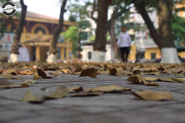 Bật mí bí mật của 3 ngôi trường nổi tiếng ở Hà Nội: Có 1 sở thú ngay trong trường, học hành bị stress quá thì rủ nhau trốn lên cửa trời - Ảnh 4.
