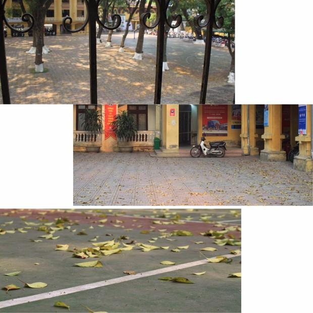 Bật mí bí mật của 3 ngôi trường nổi tiếng ở Hà Nội: Có 1 sở thú ngay trong trường, học hành bị stress quá thì rủ nhau trốn lên cửa trời - Ảnh 6.