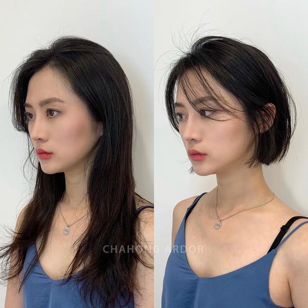 15 màn xuống tóc xuất sắc chứng minh: muốn xinh hơn, trẻ hơn hay sành điệu hơn, bạn chỉ cần mạnh dạn cắt tóc ngắn - Ảnh 3.