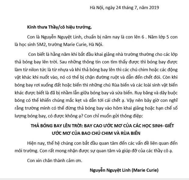 Lễ khai giảng của cô bé lớp 6 gửi thư tới 40 trường học ở Hà Nội: Mình có thể đừng thả bóng bay vào hôm khai giảng không? - Ảnh 18.