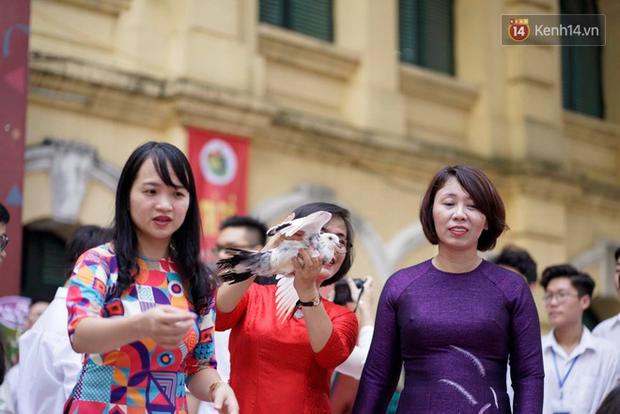 Ngôi trường THPT ở Hà Nội được khen ngợi hết lời vì thả chim bồ câu thay vì thả bóng bay ngày khai giảng - Ảnh 7.