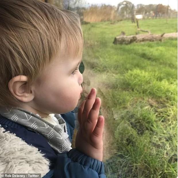 Chuyện gây bão: Con 2 tuổi qua đời do ung thư, tài tử Fast & Furious tiếc nuối vì hôm nay lẽ ra là ngày bé lần đầu đến lớp - Ảnh 3.