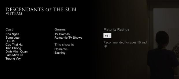Hậu Duệ Mặt Trời bản Việt trở thành phim truyền hình Việt Nam đầu tiên lên kệ Netflix - Ảnh 5.