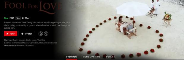Hậu Duệ Mặt Trời bản Việt trở thành phim truyền hình Việt Nam đầu tiên lên kệ Netflix - Ảnh 9.