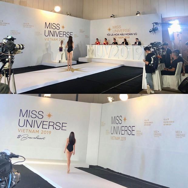 Lộ ảnh body chưa photoshop của Thúy Vân, Hương Ly và dàn thí sinh casting Hoa hậu Hoàn vũ: Ai đáng gờm nhất? - Ảnh 4.