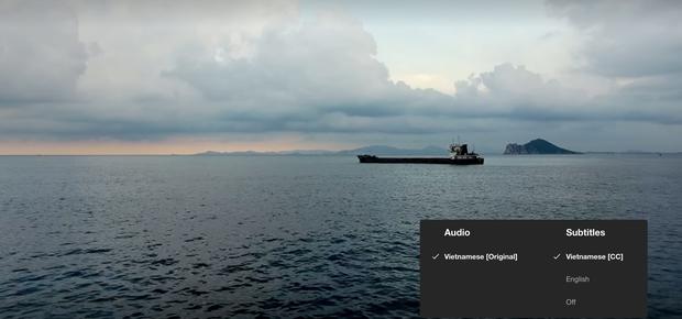 Hậu Duệ Mặt Trời bản Việt trở thành phim truyền hình Việt Nam đầu tiên lên kệ Netflix - Ảnh 6.