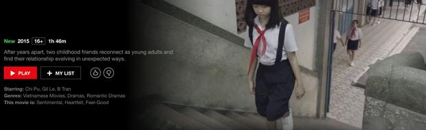 Hậu Duệ Mặt Trời bản Việt trở thành phim truyền hình Việt Nam đầu tiên lên kệ Netflix - Ảnh 7.