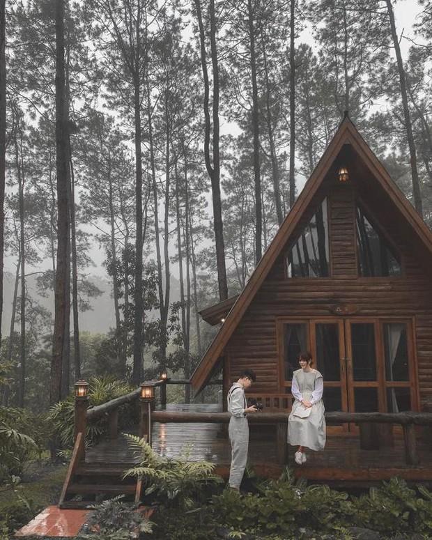 Resort mới toanh nằm giữa rừng thông đang siêu hot ở Chiangmai (Thái), rất hợp cho những ai ôm mộng trốn cả thế giới mùa thu này  - Ảnh 9.