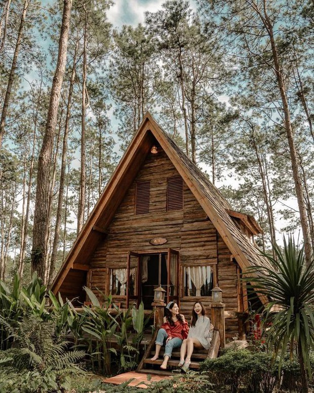 Resort mới toanh nằm giữa rừng thông đang siêu hot ở Chiangmai (Thái), rất hợp cho những ai ôm mộng trốn cả thế giới mùa thu này  - Ảnh 11.
