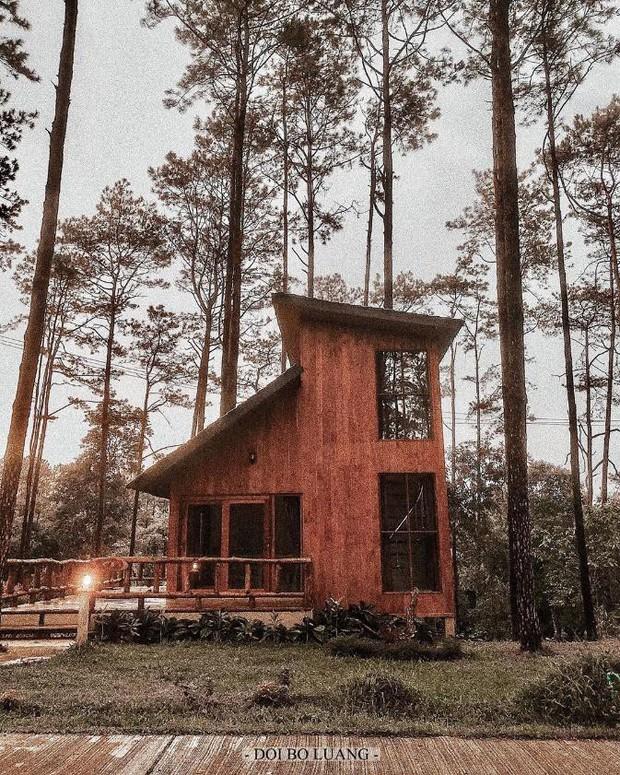 Resort mới toanh nằm giữa rừng thông đang siêu hot ở Chiangmai (Thái), rất hợp cho những ai ôm mộng trốn cả thế giới mùa thu này  - Ảnh 12.
