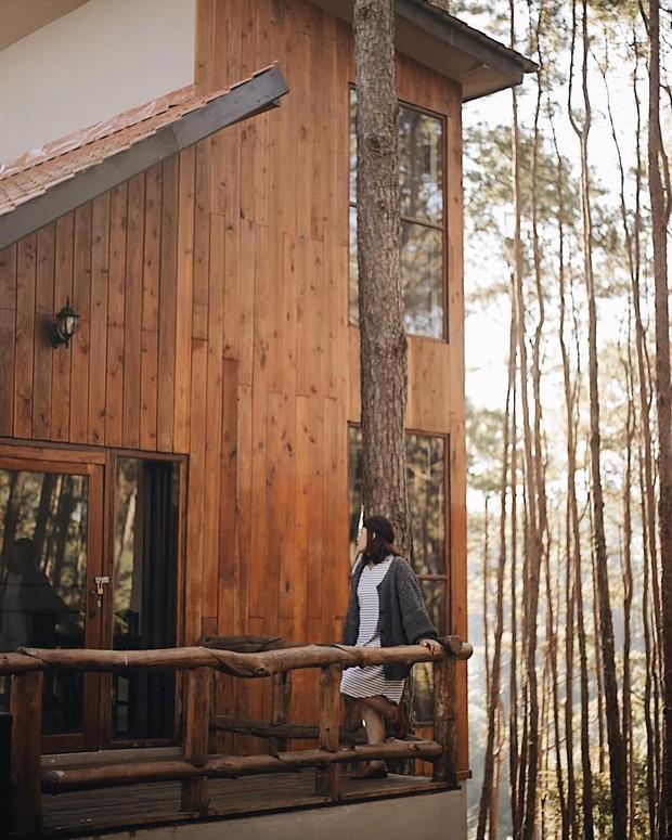 Resort mới toanh nằm giữa rừng thông đang siêu hot ở Chiangmai (Thái), rất hợp cho những ai ôm mộng trốn cả thế giới mùa thu này  - Ảnh 13.