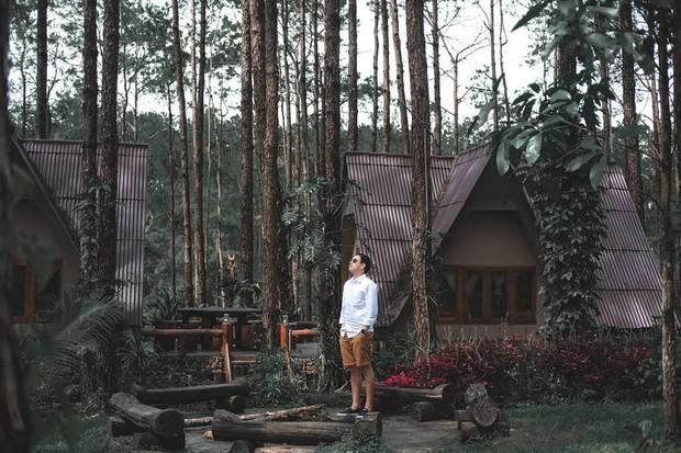 Resort mới toanh nằm giữa rừng thông đang siêu hot ở Chiangmai (Thái), rất hợp cho những ai ôm mộng trốn cả thế giới mùa thu này  - Ảnh 3.