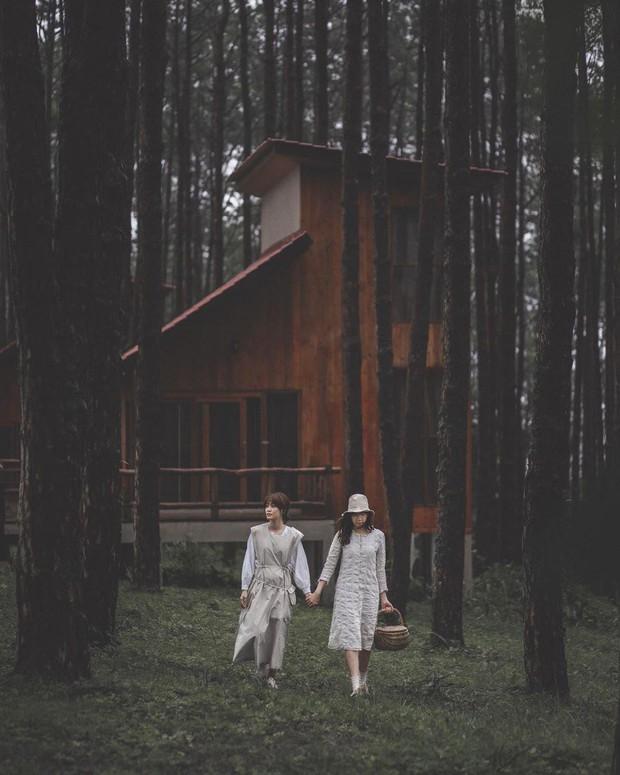 Resort mới toanh nằm giữa rừng thông đang siêu hot ở Chiangmai (Thái), rất hợp cho những ai ôm mộng trốn cả thế giới mùa thu này  - Ảnh 21.