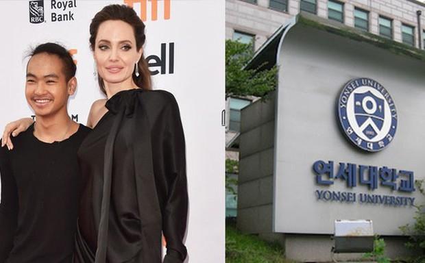 Maddox Jolie-Pitt: Đứa trẻ mồ côi đổi đời nhờ Angelina nhận nuôi, đối đầu bố để bảo vệ mẹ và quyết định bất ngờ ở xứ Hàn - Ảnh 7.