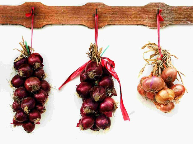14 loại thực phẩm trong bếp hay được bảo quản sai chỗ, làm chúng mất đi chất dinh dưỡng tốt nhất - Ảnh 3.