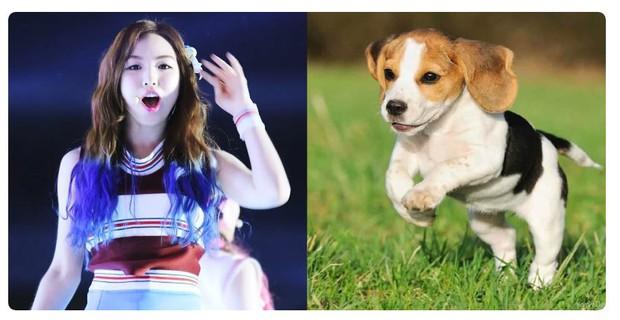 Sau 5 năm debut, các thành viên Red Velvet ai nấy đều lột xác: Irene ngày càng hack tuổi khó tin, vitamin Joy sexy bất ngờ - Ảnh 12.