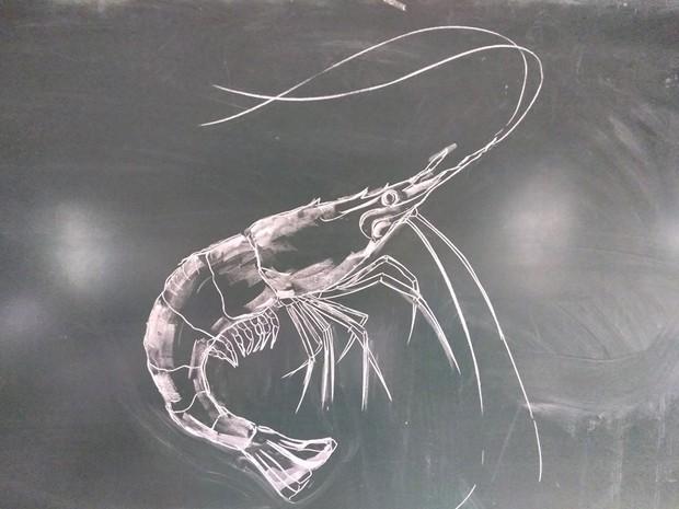 Thầy giáo trổ tài vẽ tranh bằng phấn, dân tình thán phục: Đẹp quá chẳng nỡ xóa đi! - Ảnh 4.