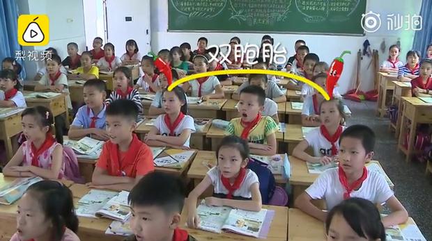 Trường tiểu học có hơn 20 cặp song sinh, khai giảng năm học mới từ cô giáo đến bạn học đều gặp khó khăn khi phân biệt - Ảnh 1.