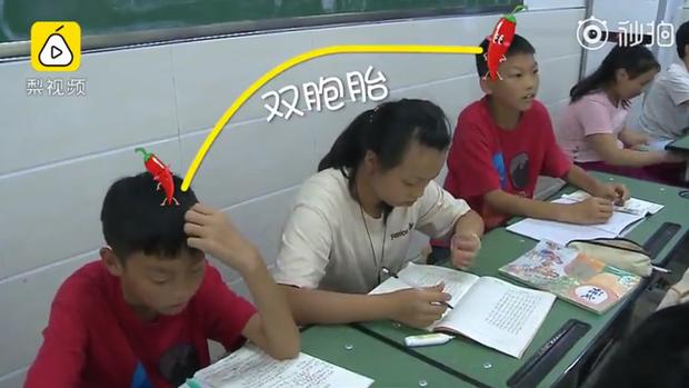 Trường tiểu học có hơn 20 cặp song sinh, khai giảng năm học mới từ cô giáo đến bạn học đều gặp khó khăn khi phân biệt - Ảnh 4.