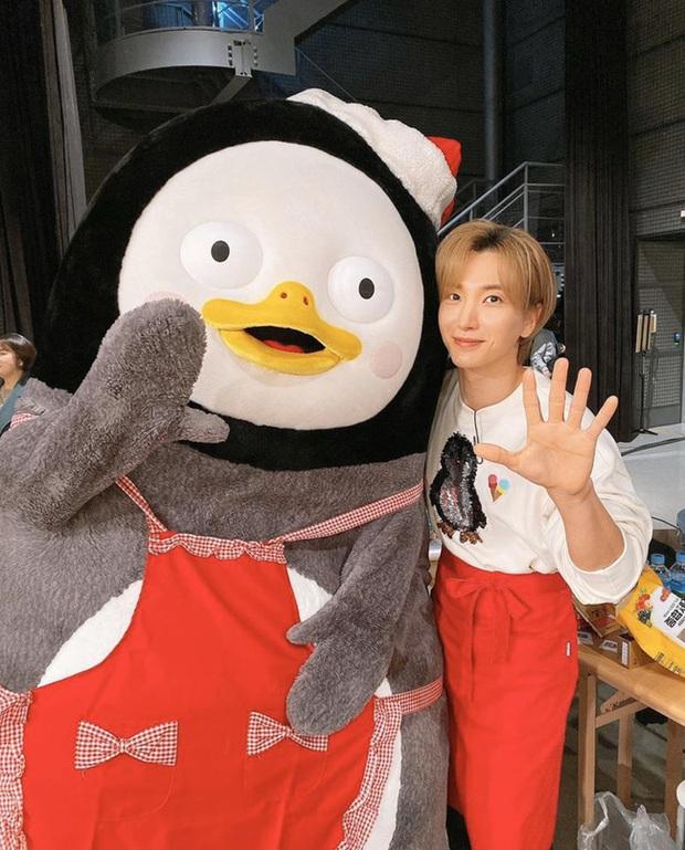 Chim cánh cụt Pengsoo: Thần tượng mới của người Hàn Quốc bởi tính cách không giống ai, dám đi ngược lại chuẩn mực và định kiến của xứ kim chi - Ảnh 7.