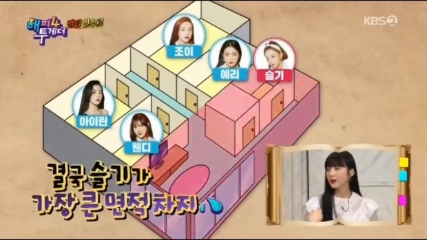 Seulgi (Red Velvet) phải dùng nhà kho làm phòng ngủ, fan bức xúc SM khi so sánh với căn hộ xa hoa của BLACKPINK - Ảnh 1.