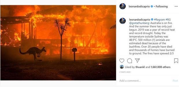 """Thor Chris Hemsworth đã khủng, tài tử """"Titanic"""" Leonardo còn khủng hơn: Lập quỹ cứu trợ đại thảm hoạ cháy rừng Úc với số tiền không tưởng - Ảnh 3."""
