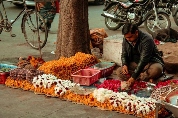 """Hành trình 10 ngày khám phá Ấn Độ tự túc của travel blogger Lý Thành Cơ, đất nước này có """"đáng sợ"""" như mọi người vẫn nghĩ? - Ảnh 15."""
