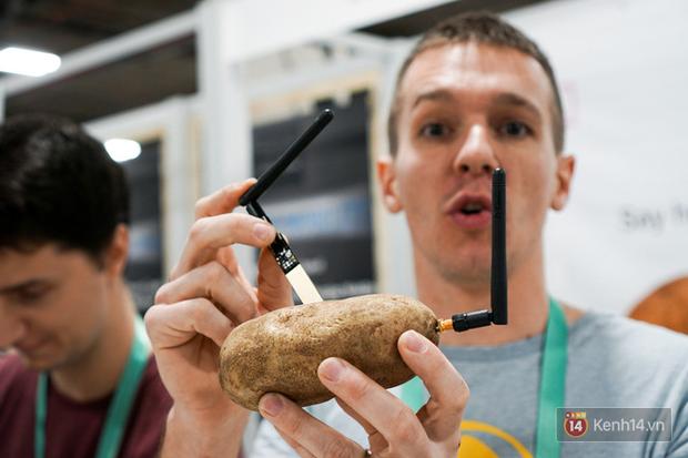 Biến củ khoai tây vô tri thành có não: Liệu đây có phải bảo bối ăng-ten thần kỳ của Doraemon? - Ảnh 1.