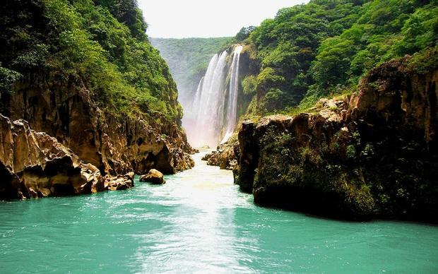 Clip về vẻ đẹp đáng kinh ngạc của hố bơi tự nhiên bên thác nước tại Mexico thu về triệu view, tín đồ du lịch lại có thêm một điểm đến mới để note vào wishlist của mình - Ảnh 3.
