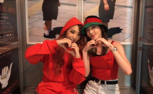 Những nhóm nhạc Kpop khoảnh cách tuổi nhiều đến khó tin: Irene - Yeri cách nhau 8 tuổi vẫn chưa sốc bằng 2NE1 - Ảnh 13.