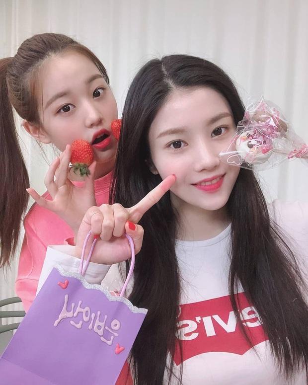 Những nhóm nhạc Kpop khoảnh cách tuổi nhiều đến khó tin: Irene - Yeri cách nhau 8 tuổi vẫn chưa sốc bằng 2NE1 - Ảnh 8.
