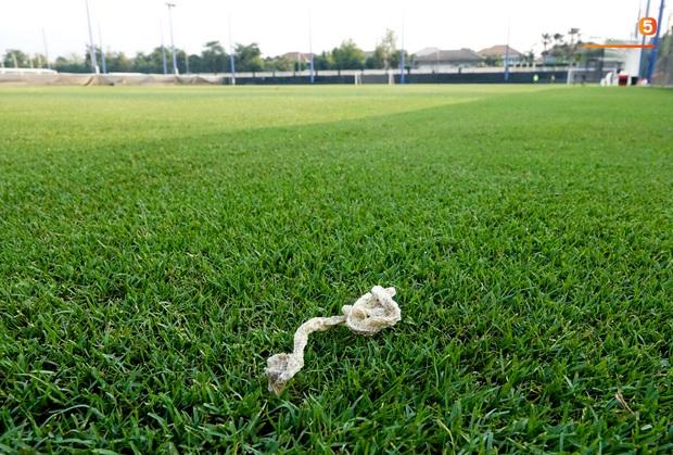 Hoảng hồn khi thấy da rắn xuất hiện ở sân tập của U23 Việt Nam trước ngày quyết đấu Triều Tiên - Ảnh 2.