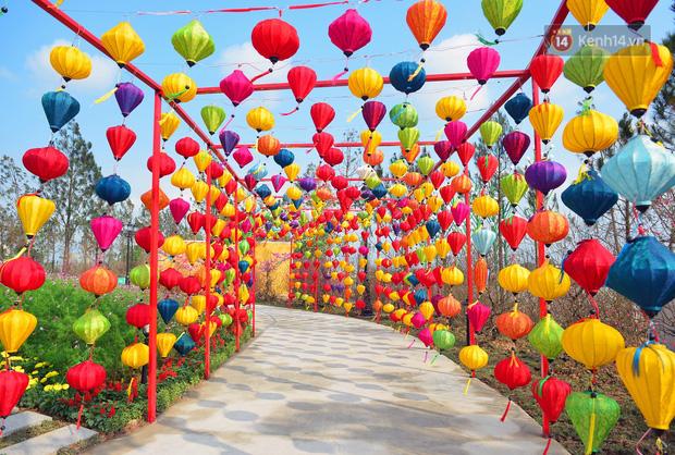 Vườn đào xuân 1000 gốc khoe sắc trong khuôn viên đại học VinUni vừa khánh thành - Ảnh 13.