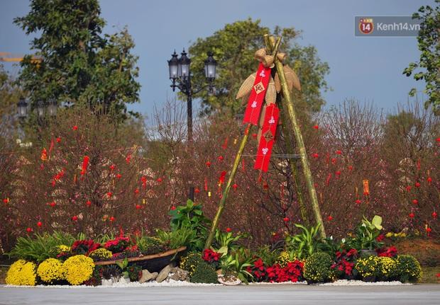 Vườn đào xuân 1000 gốc khoe sắc trong khuôn viên đại học VinUni vừa khánh thành - Ảnh 4.
