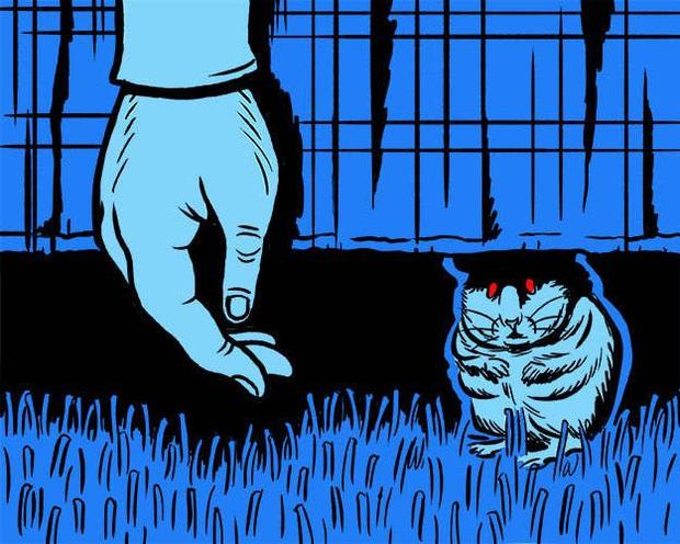 Mèo nhà gặm xác người: Tưởng là chuyện kinh dị nhưng có thật và khoa học mới tiết lộ quá trình này diễn ra như thế nào - Ảnh 3.
