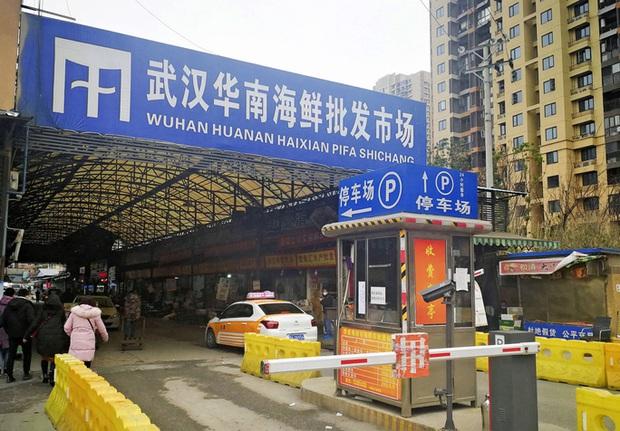 Virus viêm phổi lạ ở Trung Quốc đã xâm nhập các nước láng giềng - Ảnh 1.