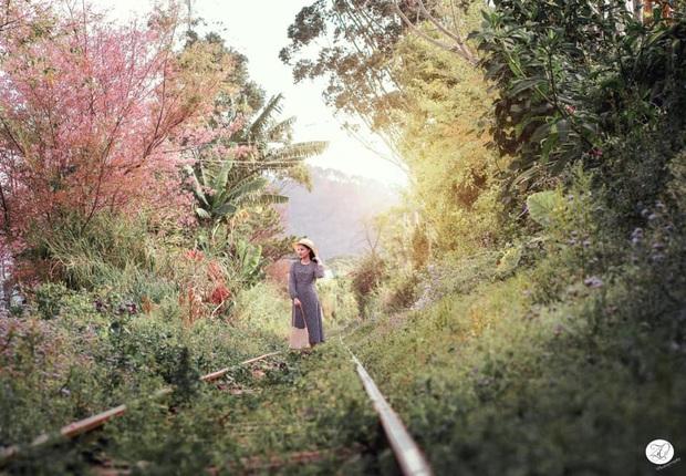 Đà Lạt lại lộ diện con đường tàu tình chẳng khác nào khung trời Nhật Bản, hiểm nguy vẫn rình rập du khách ghé thăm - Ảnh 2.