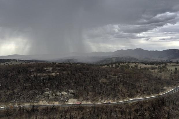 Biểu cảm vui sướng tột độ của bác nông dân khi đón nhận trận mưa quý giá, giúp tưới mát và dập tắt cháy rừng ở Úc - Ảnh 5.
