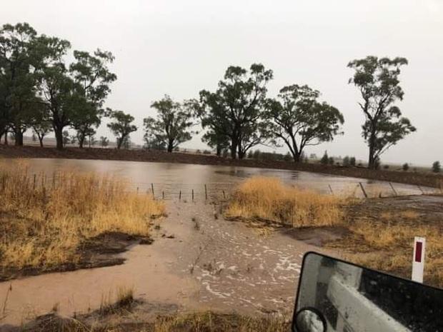 Biểu cảm vui sướng tột độ của bác nông dân khi đón nhận trận mưa quý giá, giúp tưới mát và dập tắt cháy rừng ở Úc - Ảnh 6.
