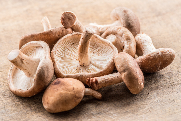 5 loại thực phẩm bạn tuyệt đối không nên ăn cùng với củ cải trắng nếu không muốn mất chất, thậm chí gây ngộ độc - Ảnh 4.