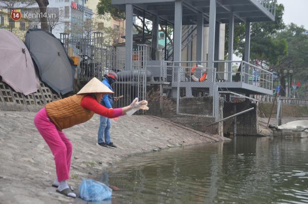 Hà Nội: Cá chép vàng chết nổi khi vừa được thả xuống hồ Hoàng Cầu ngày ông Công ông Táo - Ảnh 2.