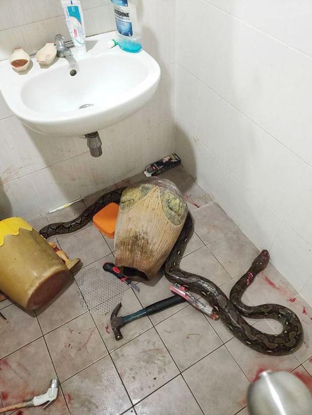 Bước vào nhà vệ sinh, người phụ nữ hốt hoảng phát hiện bé Na đang nằm cuộn tròn chờ mình để tấn công - Ảnh 2.
