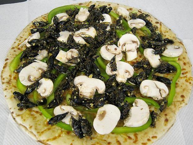 Những chiếc pizza kỳ quặc nhất hành tinh ai nhìn vào cũng muốn té ngửa, Việt Nam có hàng loạt cái tên góp mặt (Phần 3) - Ảnh 1.